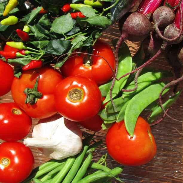 Vos investissements peuvent réduire le gaspillage alimentaire!