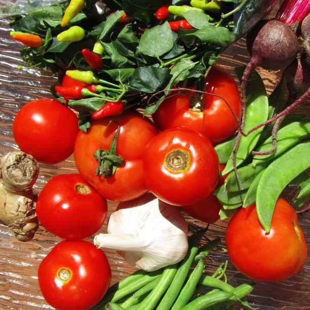Lokale, biologische én leverbare groenten en fruit in Gent