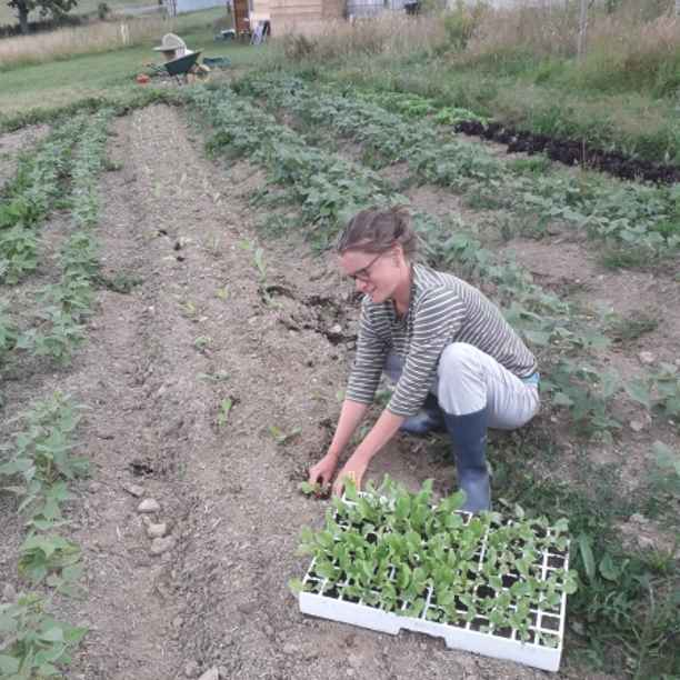 Triodos Foundation a entendu l'appel de WWOOF !