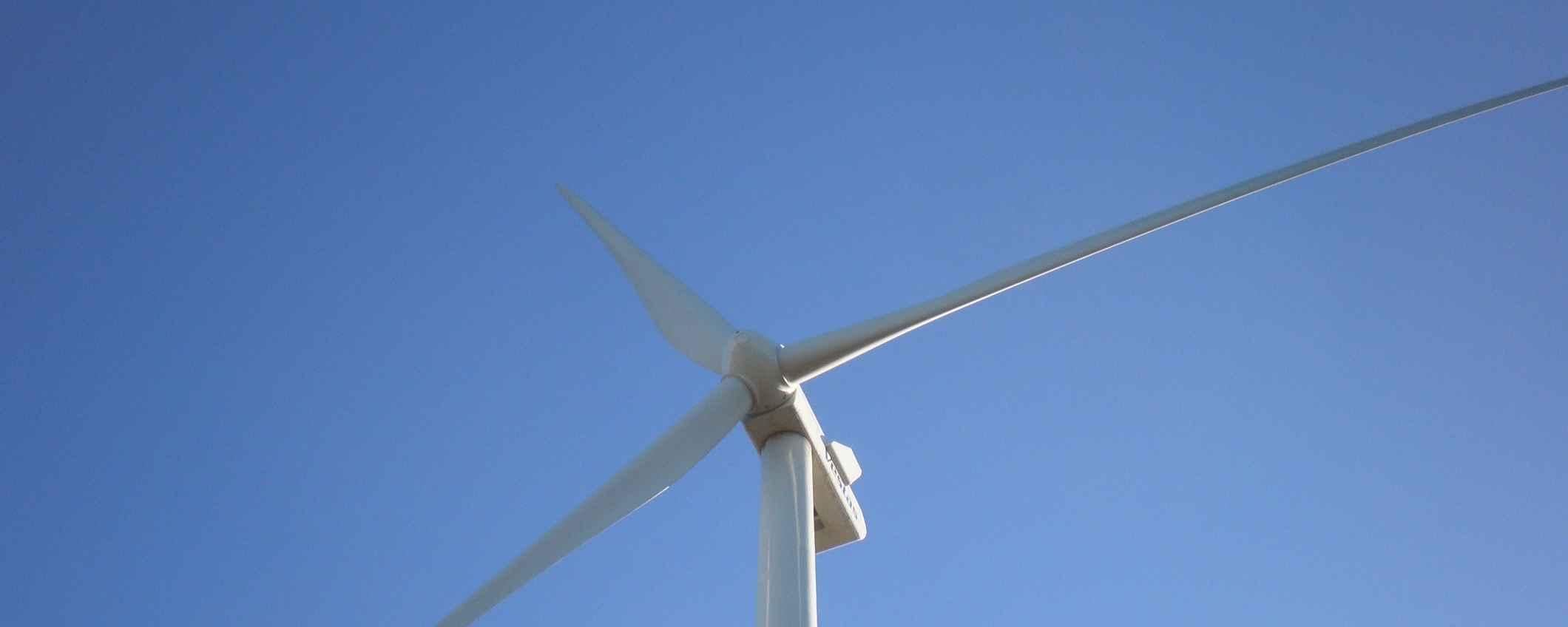 Vestas Wind Systems A/S, une entreprise pionnière dans la protection de l'environnement