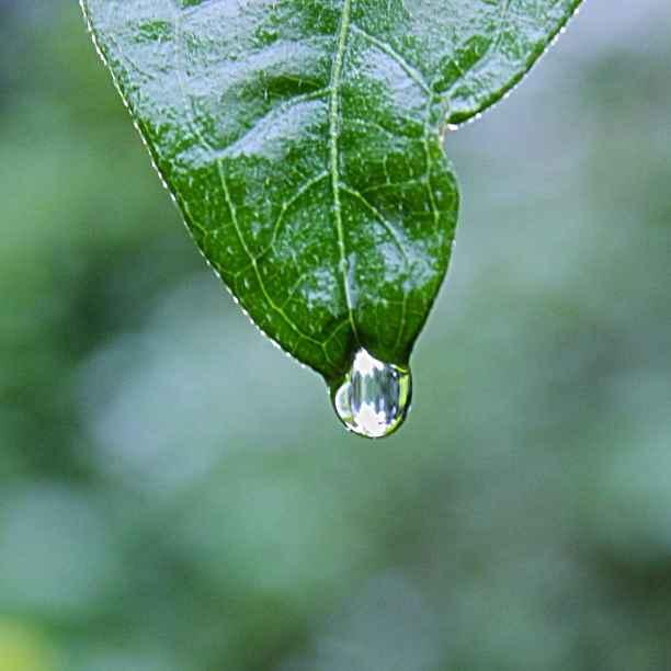 Investir dans l'eau pour tous